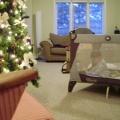 DD in playpen beside Christmas tree