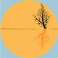 """Together"", poetry by Roshan James, Kitchener Waterloo, Ontario, Canada"