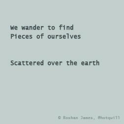 """Wander"" poetry by Roshan James, Wellesley, Ontario, Canada"