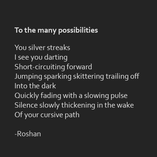 """To the many possibilities"" poetry by Roshan James, Kitchener Waterloo, Ontario, Canada"
