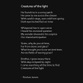 """Creatures of the light"" poetry by Roshan James, Wellesley, Ontario, Canada"