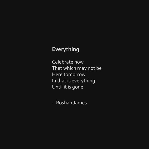 """Everything"" poetry by Roshan James, Wellesley, Ontario, Canada"