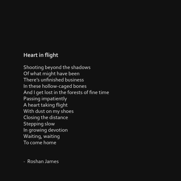"""""""Heart in flight"""" poetry by Roshan James, Wellesley, Ontario, Canada"""