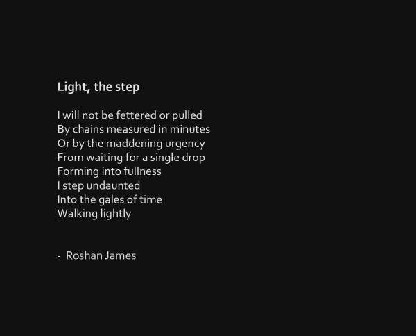 """Light, the step"" poetry by Roshan James, Wellesley, Ontario, Canada"