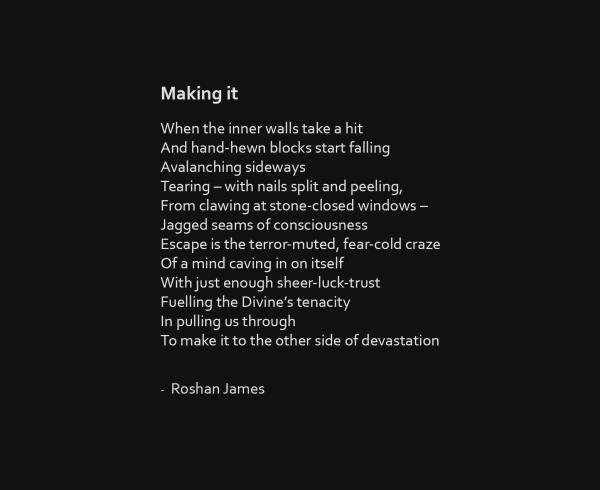 """""""Making it"""" poetry by Roshan James, Wellesley, Ontario, Canada"""