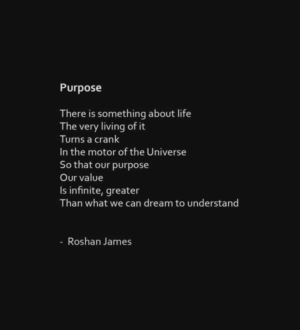 """Purpose"" poetry by Roshan James, Wellesley, Ontario, Canada"