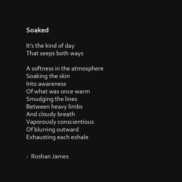 """""""Soaked"""" poetry by Roshan James, Wellesley, Ontario, Canada"""