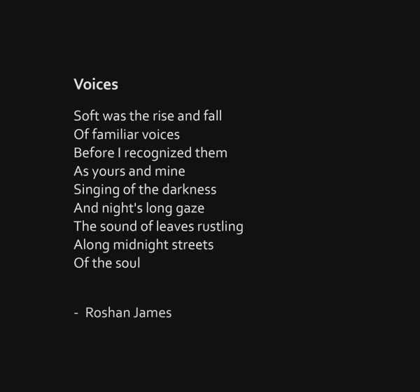 """Voices"" - poetry by Roshan James, Wellesley, Ontario, Canada"