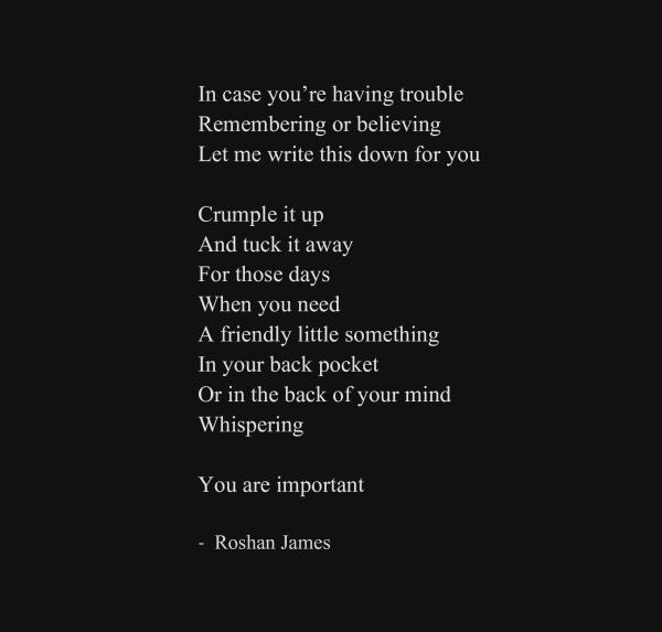"""""""You"""" - poetry by Roshan James, Wellesley, Ontario, Canada"""