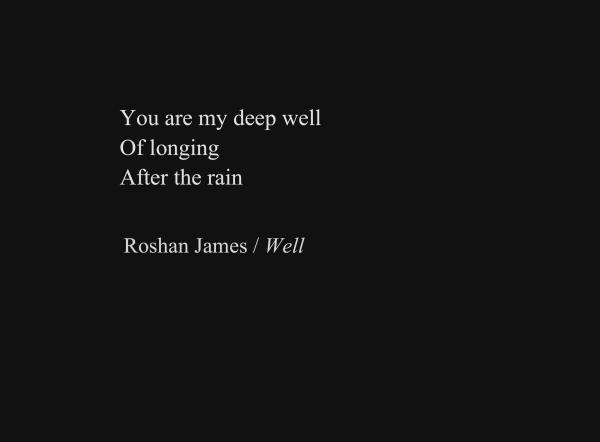 """""""Well"""" - poetry by Roshan James, Wellesley, Ontario, Canada"""