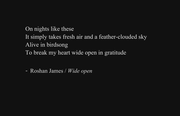 """Wide open"" - poetry by Roshan James, Wellesley, Ontario, Canada"