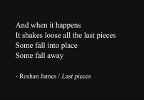 """Last pieces"" - poetry by Roshan James, Wellesley, Ontario, Canada"