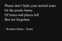 """""""Scars"""" - poetry by Roshan James, Wellesley, Ontario, Canada"""