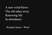 """""""Wind"""" - poetry by Roshan James, Wellesley, Ontario, Canada"""