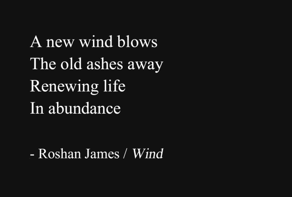 """Wind"" - poetry by Roshan James, Wellesley, Ontario, Canada"