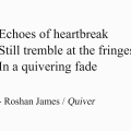 Echoes of heartbreak Still tremble at the fringes In a quivering fade